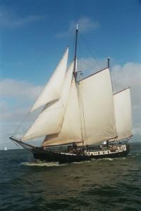 gaia-halve-wind